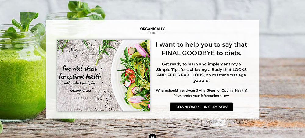 Daring Design Co Opt-in Page Review Organically Thin Header